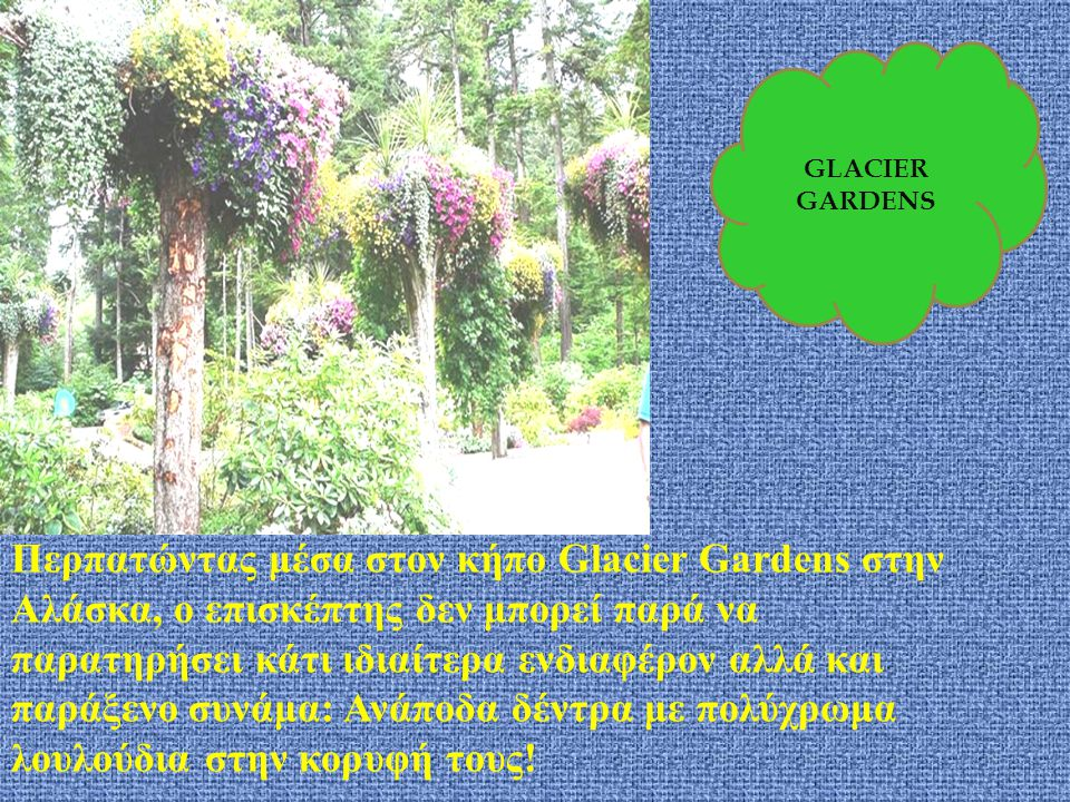 Περπατώντας μέσα στον κήπο Glacier Gardens στην Αλάσκα, ο επισκέπτης δεν μπορεί παρά να παρατηρήσει κάτι ιδιαίτερα ενδιαφέρον αλλά και παράξενο συνάμα