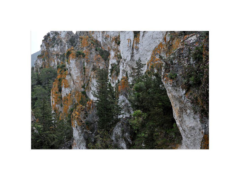 Νότια της εκκλησίας του Χρυσοσώτηρα βρίκεται η πηγή νερού γνωστή ως Μάνα που είναι η μεγαλύτερα μετά τα κεφαλόβρυσα της Λαπήθου και του Καραβά.