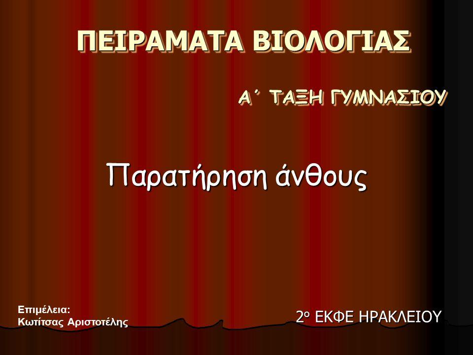 ΠΕΙΡΑΜΑΤΑ ΒΙΟΛΟΓΙΑΣ Παρατήρηση άνθους Α΄ ΤΑΞΗ ΓΥΜΝΑΣΙΟΥ Επιμέλεια: Κωτίτσας Αριστοτέλης 2 ο ΕΚΦΕ ΗΡΑΚΛΕΙΟΥ