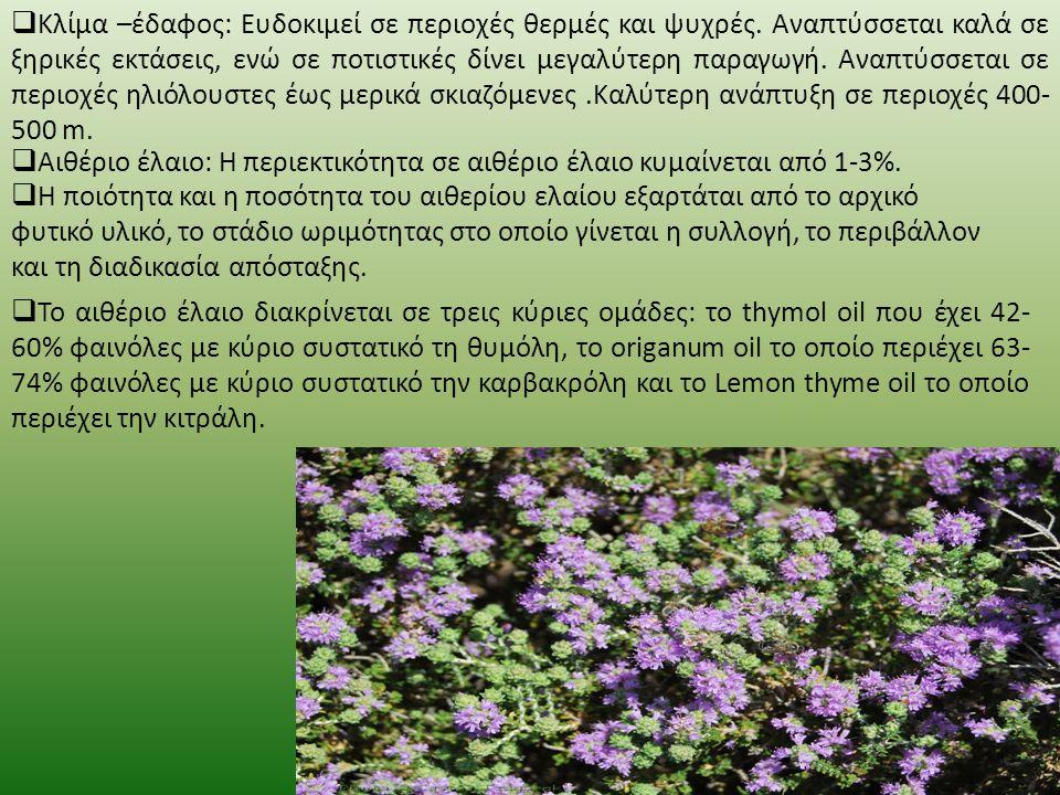  Το θυμάρι ή θύμιο (Θύμος ο κοινός, λατ. Thymus vulgaris) είναι αγγειόσπερμο, δικότυλο φυτό, το οποίο ανήκει στην τάξη των Σωληνανθών (Tubiflorae) κα