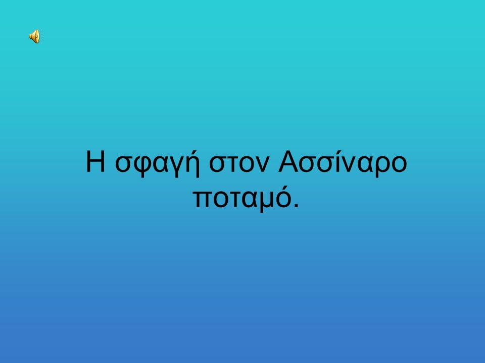Οι Πελοποννήσιοι πολέμησαν πρόσωπο με πρόσωπο με τους Αθηναίους.