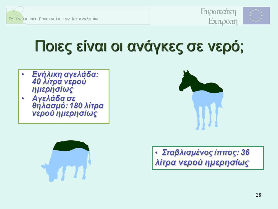 28 Ενήλικη αγελάδα: 40 λίτρα νερού ημερησίωςΕνήλικη αγελάδα: 40 λίτρα νερού ημερησίως Αγελάδα σε θηλασμό: 180 λίτρα νερού ημερησίωςΑγελάδα σε θηλασμό: