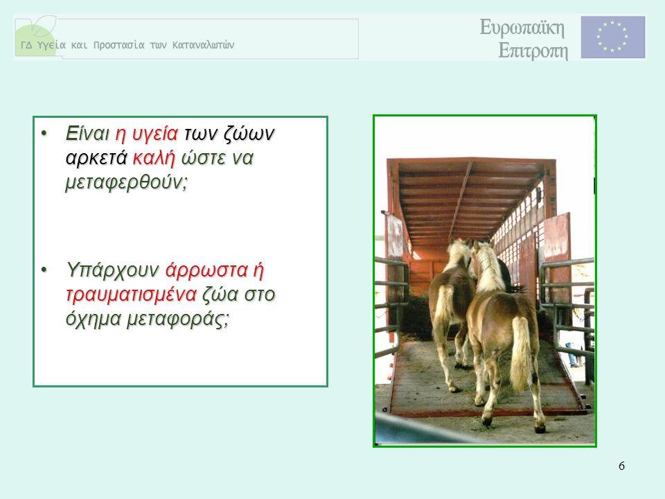 6 Είναι η υγεία των ζώων αρκετά καλή ώστε να μεταφερθούν;Είναι η υγεία των ζώων αρκετά καλή ώστε να μεταφερθούν; Υπάρχουν άρρωστα ή τραυματισμένα ζώα