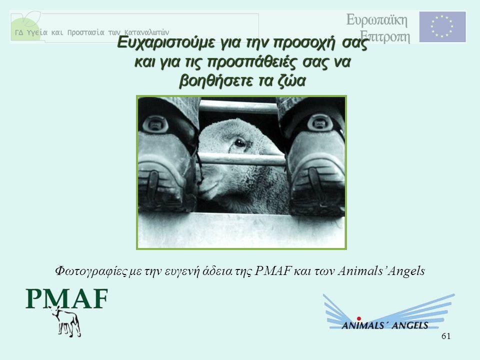 61 Ευχαριστούμε για την προσοχή σας και για τις προσπάθειές σας να βοηθήσετε τα ζώα Φωτογραφίες με την ευγενή άδεια της PMAF και των Animals' Angels