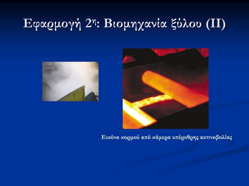 Εφαρμογή 2 η : Βιομηχανία ξύλου (ΙΙ) Εικόνα κορμού από κάμερα υπέρυθρης ακτινοβολίας