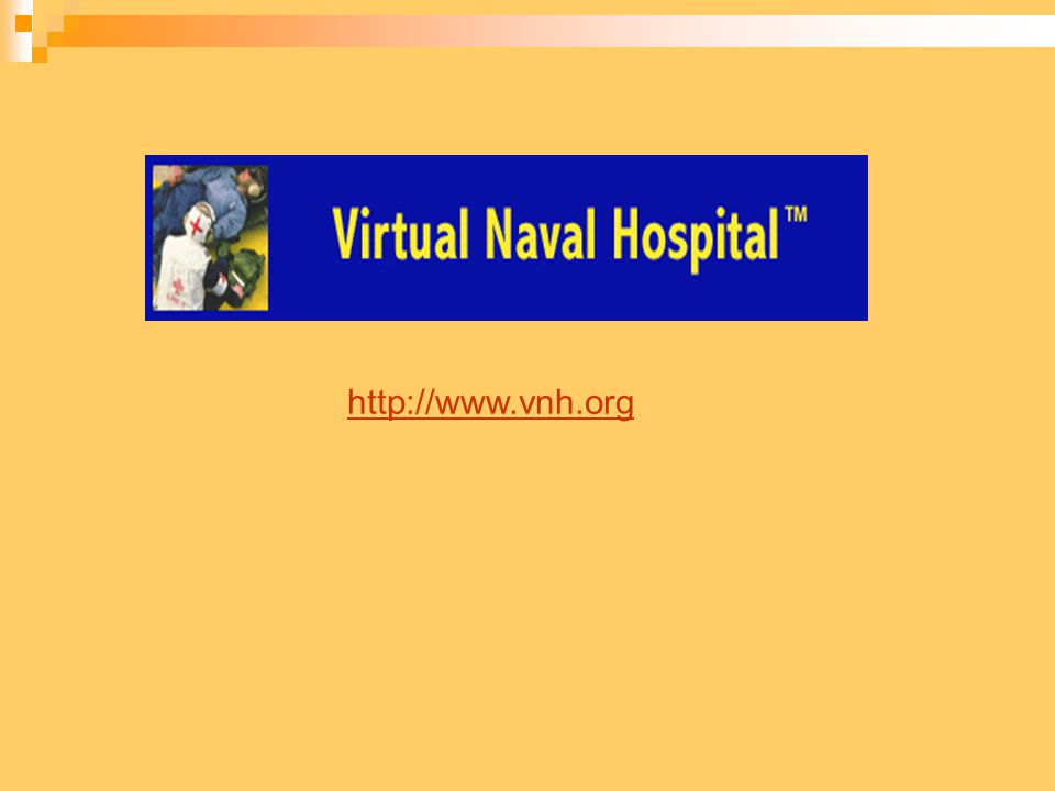 http://www.vnh.org