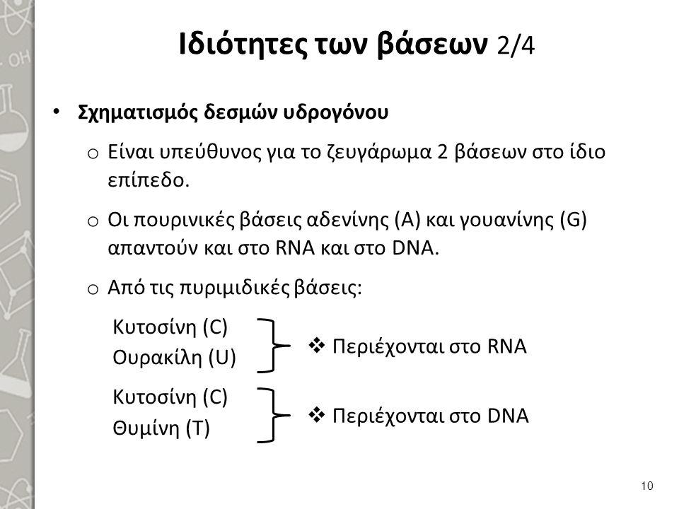 Ιδιότητες των βάσεων 2/4 Σχηματισμός δεσμών υδρογόνου o Είναι υπεύθυνος για το ζευγάρωμα 2 βάσεων στο ίδιο επίπεδο. o Οι πουρινικές βάσεις αδενίνης (Α