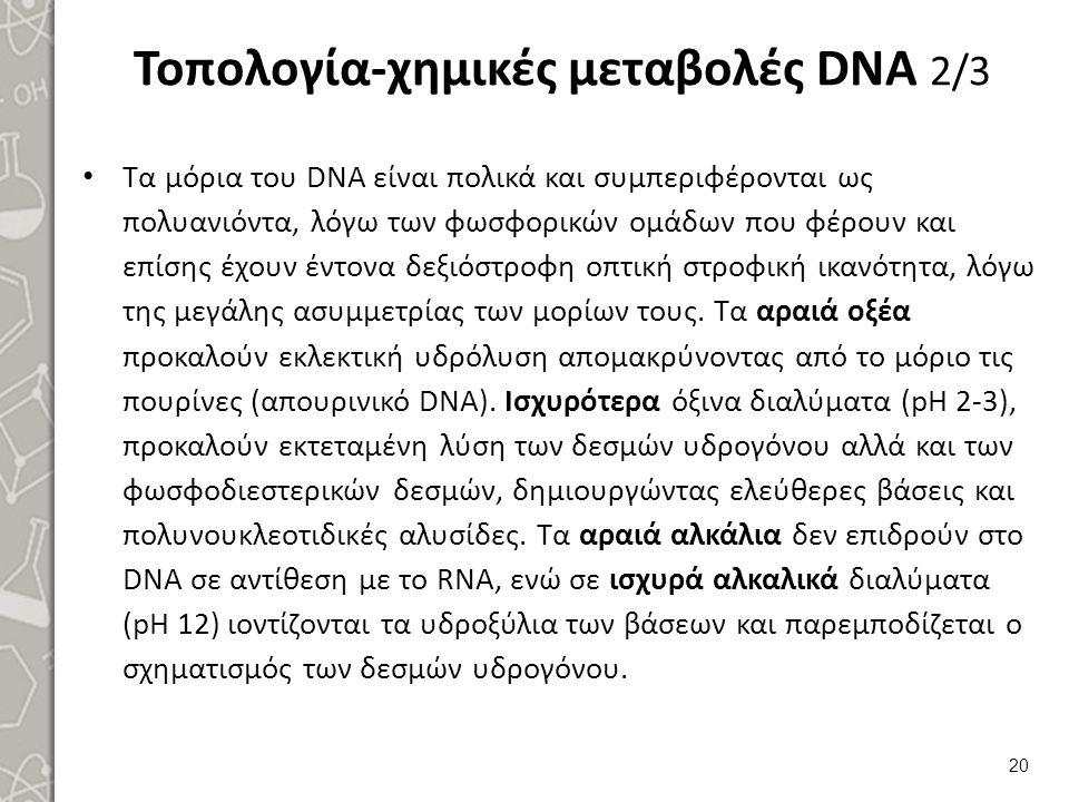 Τοπολογία-χημικές μεταβολές DNA 2/3 Τα μόρια του DΝΑ είναι πολικά και συμπεριφέρονται ως πολυανιόντα, λόγω των φωσφορικών ομάδων που φέρουν και επίσης