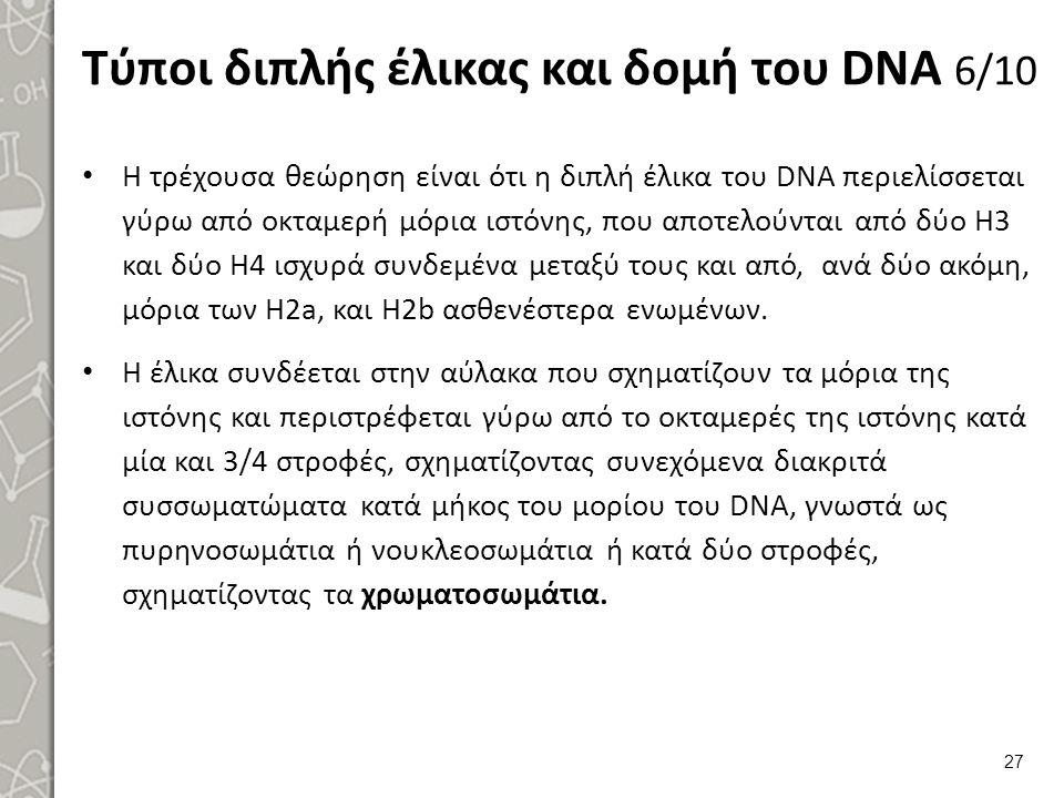 Τύποι διπλής έλικας και δομή του DNA 6/10 Η τρέχουσα θεώρηση είναι ότι η διπλή έλικα του DΝΑ περιελίσσεται γύρω από οκταμερή μόρια ιστόνης, που αποτελ