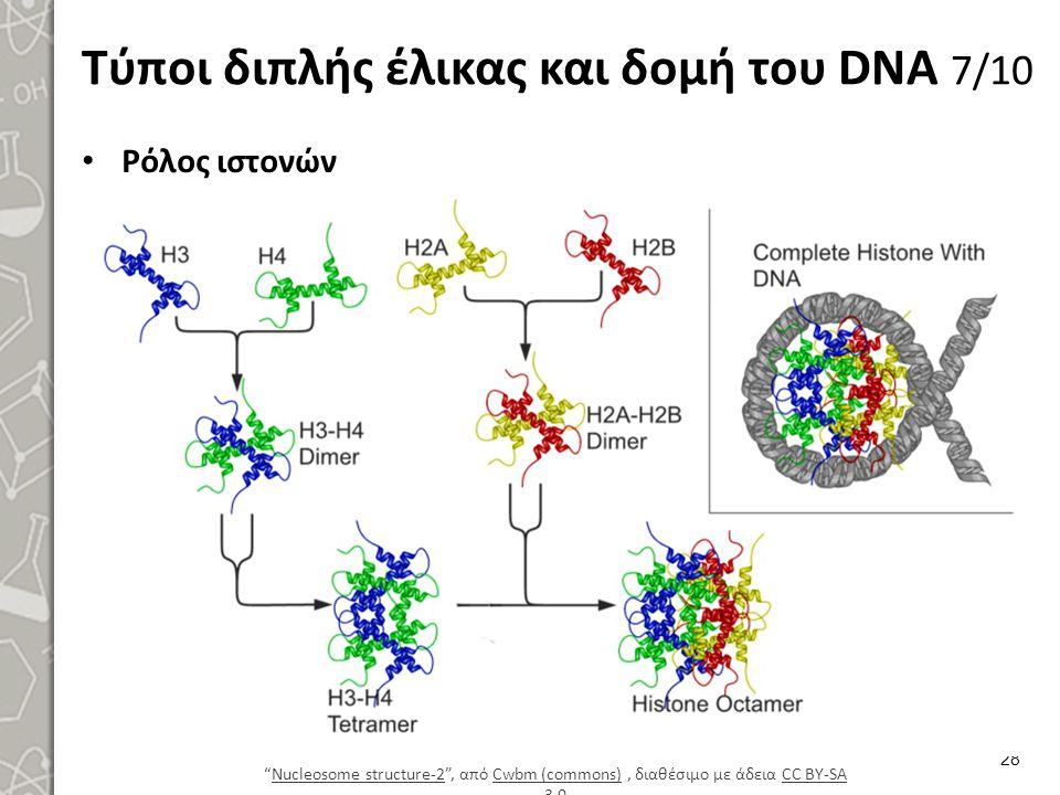 """Τύποι διπλής έλικας και δομή του DNA 7/10 Ρόλος ιστονών 28 """"Nucleosome structure-2"""", από Cwbm (commons), διαθέσιμο με άδεια CC BY-SA 3.0Nucleosome str"""