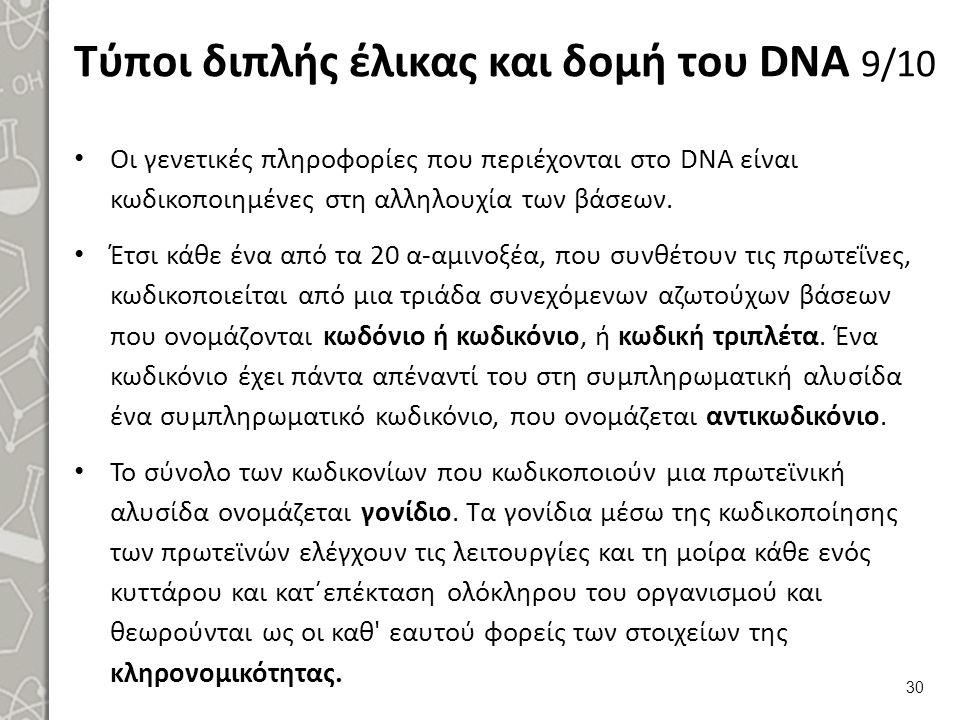 Τύποι διπλής έλικας και δομή του DNA 9/10 Οι γενετικές πληροφορίες που περιέχονται στο DNA είναι κωδικοποιημένες στη αλληλουχία των βάσεων. Έτσι κάθε