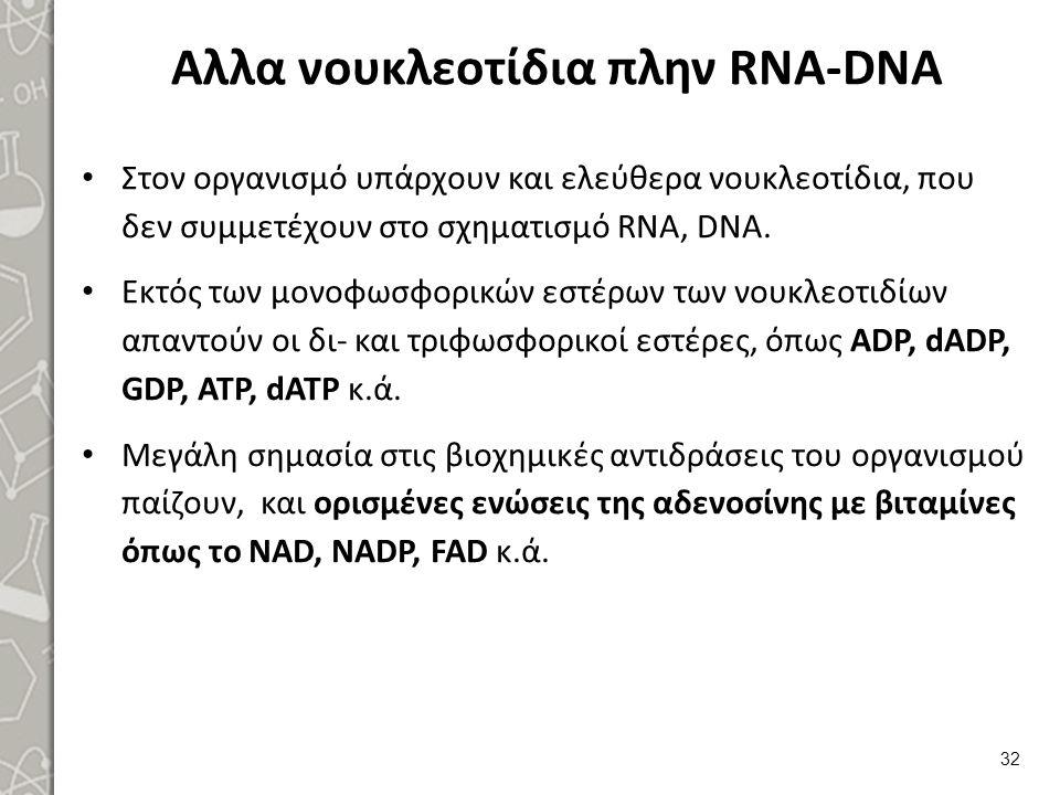 Αλλα νουκλεοτίδια πλην RNA-DNA Στον οργανισμό υπάρχουν και ελεύθερα νουκλεοτίδια, που δεν συμμετέχουν στο σχηματισμό RNA, DNA. Εκτός των μονοφωσφορικώ