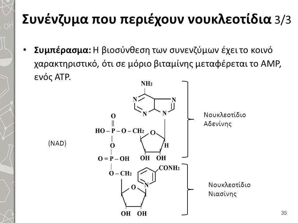 Συνένζυμα που περιέχουν νουκλεοτίδια 3/3 Συμπέρασμα: Η βιοσύνθεση των συνενζύμων έχει το κοινό χαρακτηριστικό, ότι σε μόριο βιταμίνης μεταφέρεται το Α