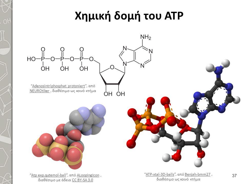 """Χημική δομή του ΑΤΡ 37 """"Adenosintriphosphat protoniert"""", από NEUROtiker, διαθέσιμο ως κοινό κτήμαAdenosintriphosphat protoniert NEUROtiker """"Atp exp.qu"""