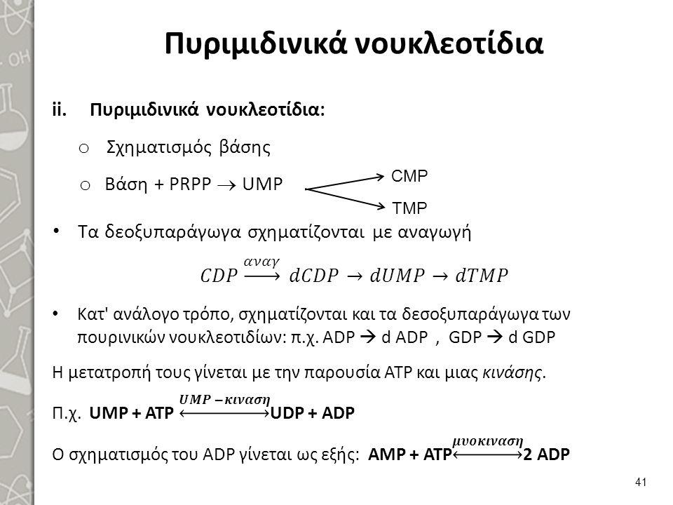 Πυριμιδινικά νουκλεοτίδια 41 CMP TMP