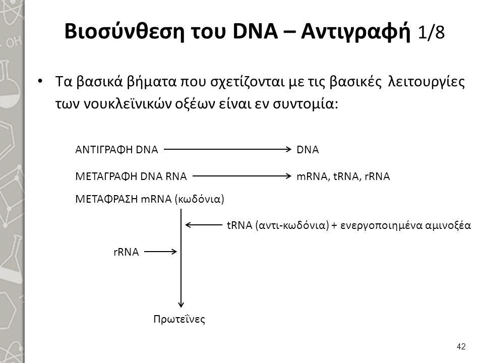 Βιοσύνθεση του DNA – Αντιγραφή 1/8 Τα βασικά βήματα που σχετίζονται με τις βασικές λειτουργίες των νουκλεϊνικών οξέων είναι εν συντομία: 42 ΑΝΤΙΓΡΑΦΗ