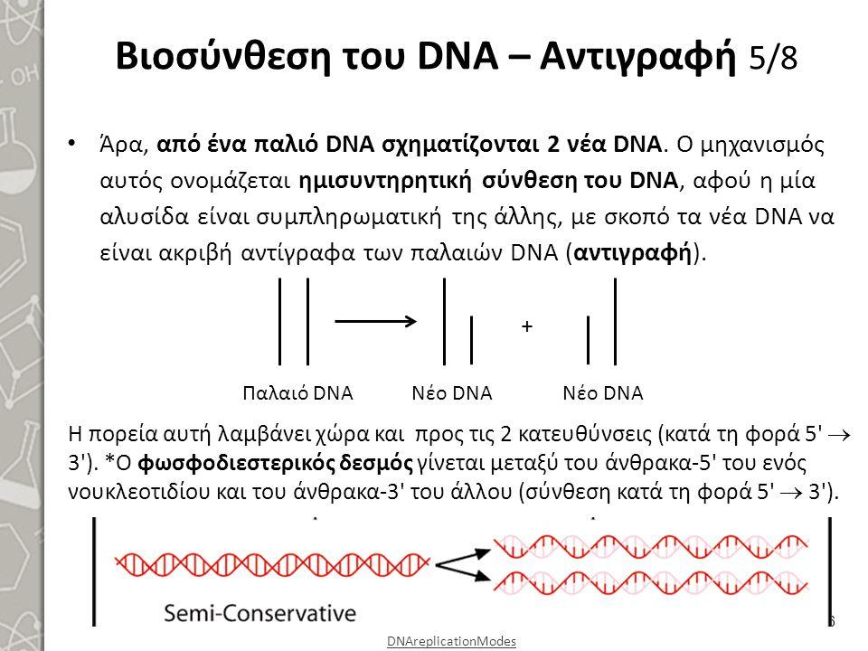 Βιοσύνθεση του DNA – Αντιγραφή 5/8 Άρα, από ένα παλιό DNA σχηματίζονται 2 νέα DNA. Ο μηχανισμός αυτός ονομάζεται ημισυντηρητική σύνθεση του DNA, αφού