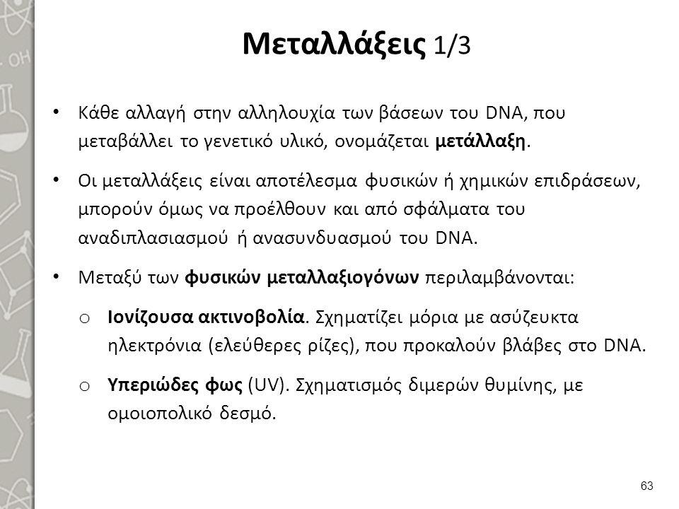 Μεταλλάξεις 1/3 Κάθε αλλαγή στην αλληλουχία των βάσεων του DNA, που μεταβάλλει το γενετικό υλικό, ονομάζεται μετάλλαξη. Οι μεταλλάξεις είναι αποτέλεσμ
