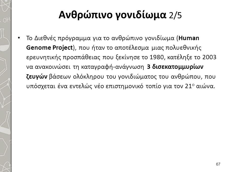 Ανθρώπινο γονιδίωμα 2/5 Το Διεθνές πρόγραμμα για το ανθρώπινο γονιδίωμα (Human Genome Project), που ήταν το αποτέλεσμα μιας πολυεθνικής ερευνητικής πρ