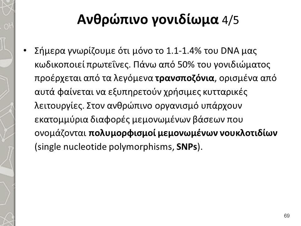 Ανθρώπινο γονιδίωμα 4/5 Σήμερα γνωρίζουμε ότι μόνο το 1.1-1.4% του DNA μας κωδικοποιεί πρωτεΐνες. Πάνω από 50% του γονιδιώματος προέρχεται από τα λεγό