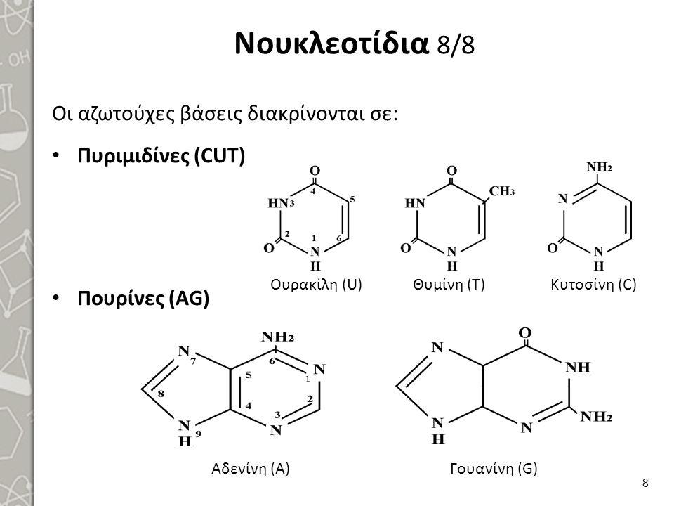 Νουκλεοτίδια 8/8 Οι αζωτούχες βάσεις διακρίνονται σε: Πυριμιδίνες (CUT) Πουρίνες (AG) 8 Ουρακίλη (U)Θυμίνη (Τ)Κυτοσίνη (C) Αδενίνη (Α)Γουανίνη (G)