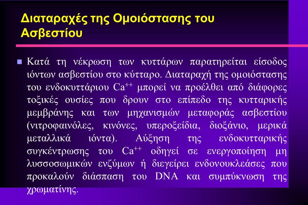 Διαταραχές της Ομοιόστασης του Ασβεστίου n Κατά τη νέκρωση των κυττάρων παρατηρείται είσοδος ιόντων ασβεστίου στο κύτταρο. Διαταραχή της ομοιόστασης τ