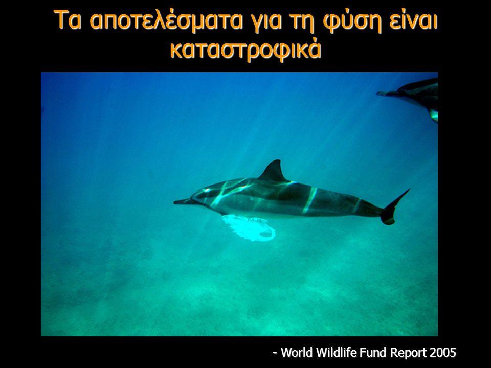 Τα αποτελέσματα για τη φύση είναι καταστροφικά - World Wildlife Fund Report 2005