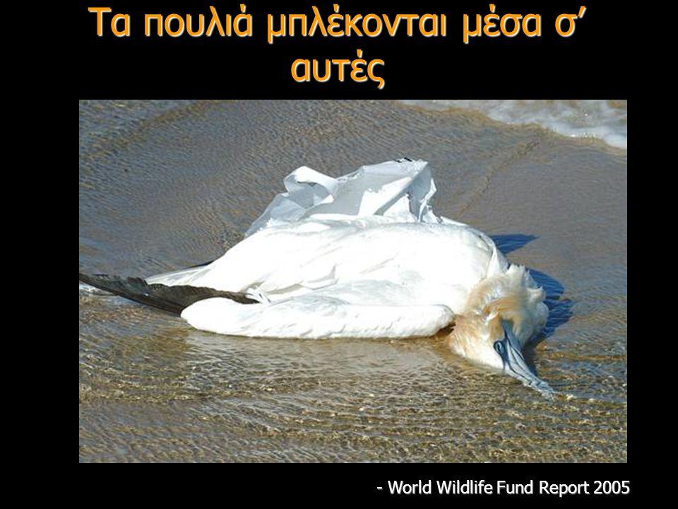Τα πουλιά μπλέκονται μέσα σ' αυτές - World Wildlife Fund Report 2005