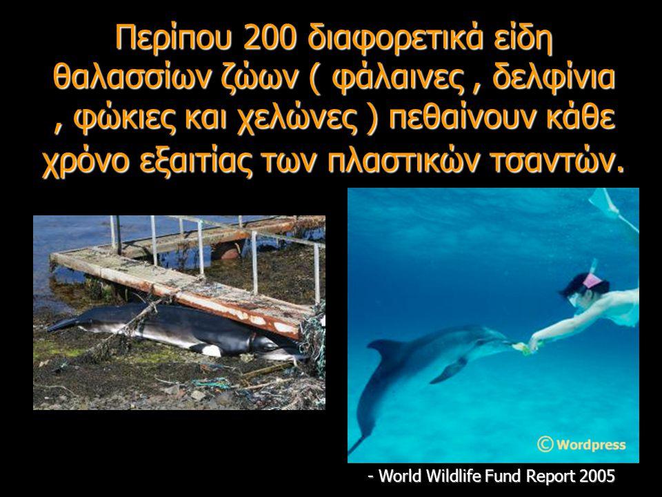 Περίπου 200 διαφορετικά είδη θαλασσίων ζώων ( φάλαινες, δελφίνια, φώκιες και χελώνες ) πεθαίνουν κάθε χρόνο εξαιτίας των πλαστικών τσαντών. - World Wi