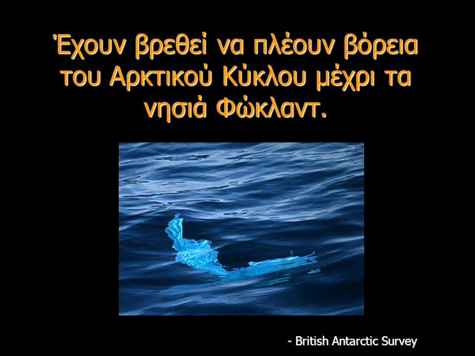 Έχουν βρεθεί να πλέουν βόρεια του Αρκτικού Κύκλου μέχρι τα νησιά Φώκλαντ. - British Antarctic Survey