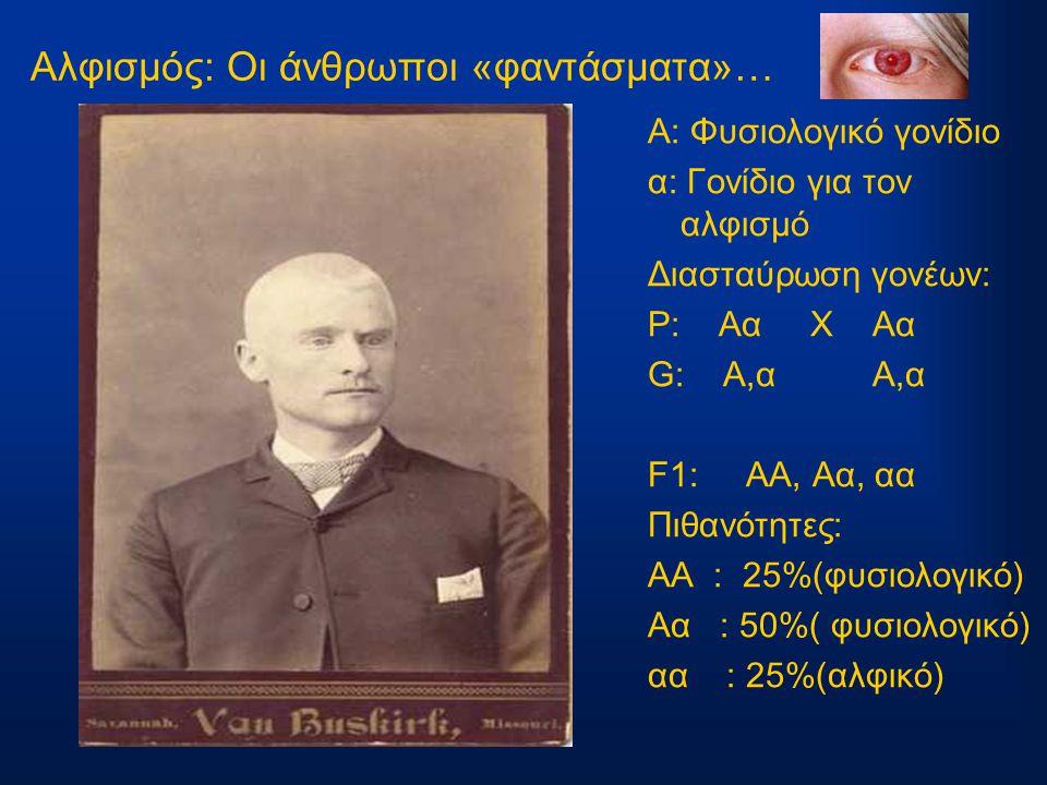 Αλφισμός: Οι άνθρωποι «φαντάσματα»… Α: Φυσιολογικό γονίδιο α: Γονίδιο για τον αλφισμό Διασταύρωση γονέων: P: Αα Χ Αα G: A,α Α,α F1: AA, Aα, αα Πιθανότ