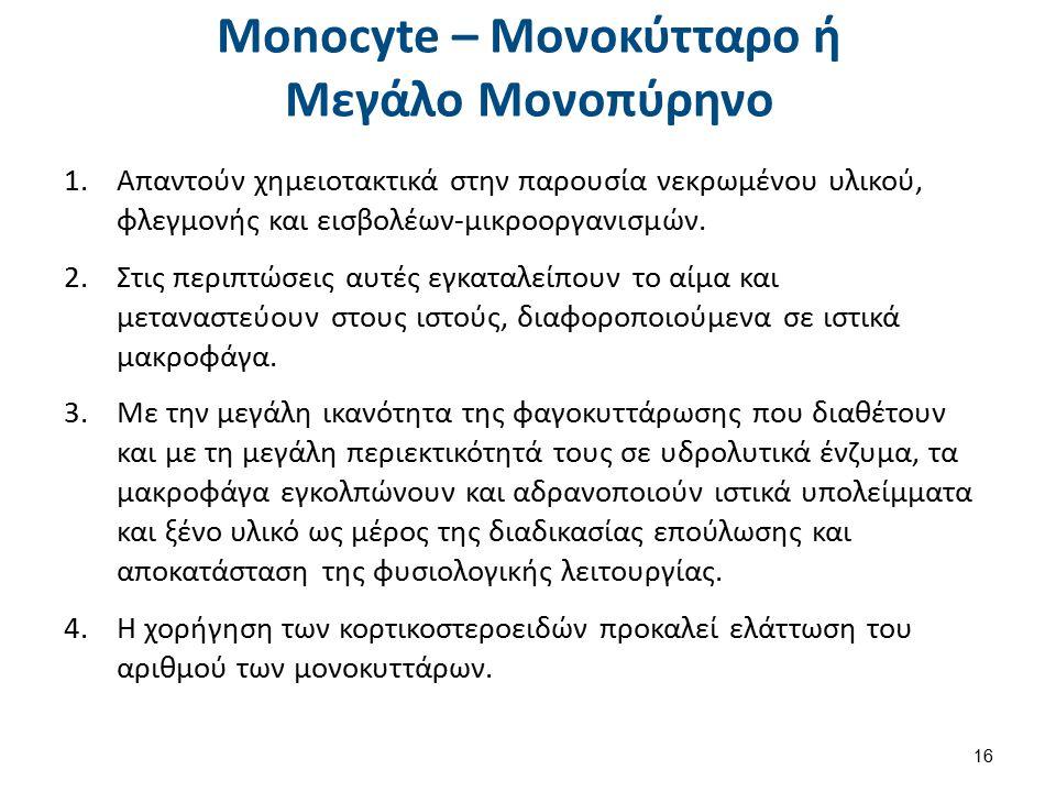 Monocyte – Μονοκύτταρο ή Μεγάλο Μονοπύρηνο 1.Απαντούν χημειοτακτικά στην παρουσία νεκρωμένου υλικού, φλεγμονής και εισβολέων-μικροοργανισμών. 2.Στις π