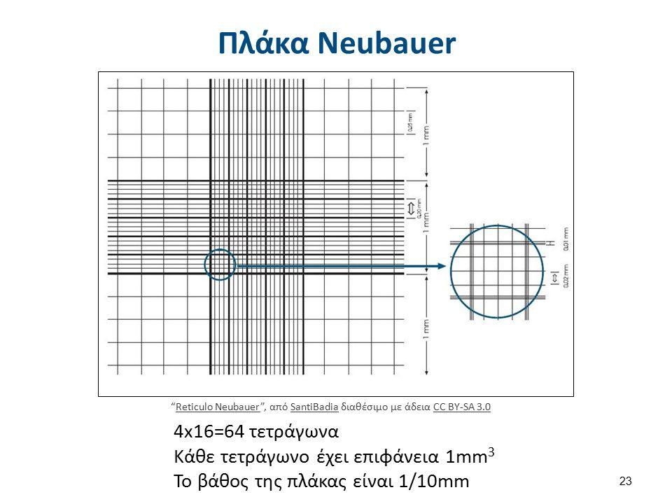 """Πλάκα Neubauer 4x16=64 τετράγωνα Κάθε τετράγωνο έχει επιφάνεια 1mm 3 To βάθος της πλάκας είναι 1/10mm """"Reticulo Neubauer"""", από SantiBadia διαθέσιμο με"""