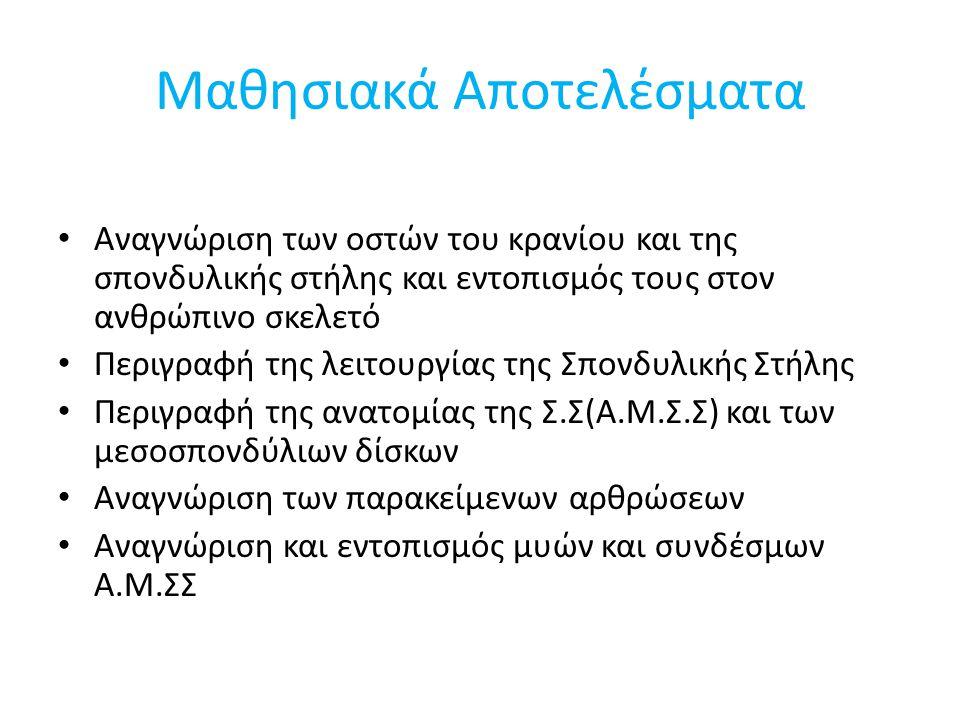 Μηνοειδής Ακρολοφία – Αρθρώσεις του Luschka Άρθρωση: – Η μηνοειδής ακρολοφία του κάτω σπονδύλου αρθρώνεται με τον ανώτερο σπόνδυλο.
