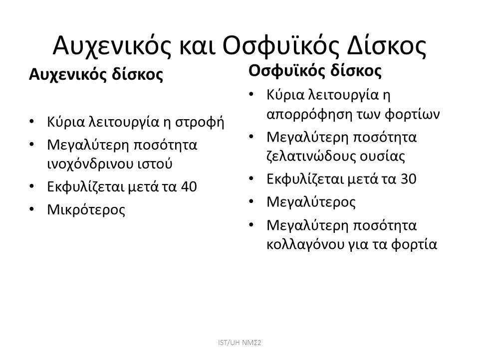 Αυχενικός και Οσφυϊκός Δίσκος ΙST/UH NMΣ2 Αυχενικός δίσκος Κύρια λειτουργία η στροφή Μεγαλύτερη ποσότητα ινοχόνδρινου ιστού Εκφυλίζεται μετά τα 40 Μικ