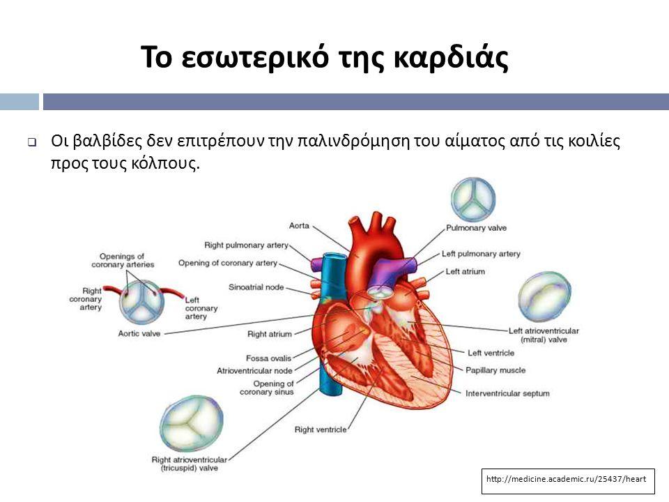  Οι βαλβίδες δεν επιτρέπουν την παλινδρόμηση του αίματος από τις κοιλίες προς τους κόλπους. Το εσωτερικό της καρδιάς http://medicine.academic.ru/2543