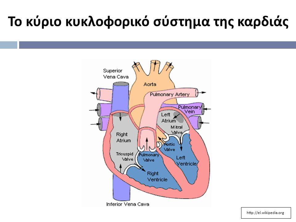 Το κύριο κυκλοφορικό σύστημα της καρδιάς http://el.wikipedia.org