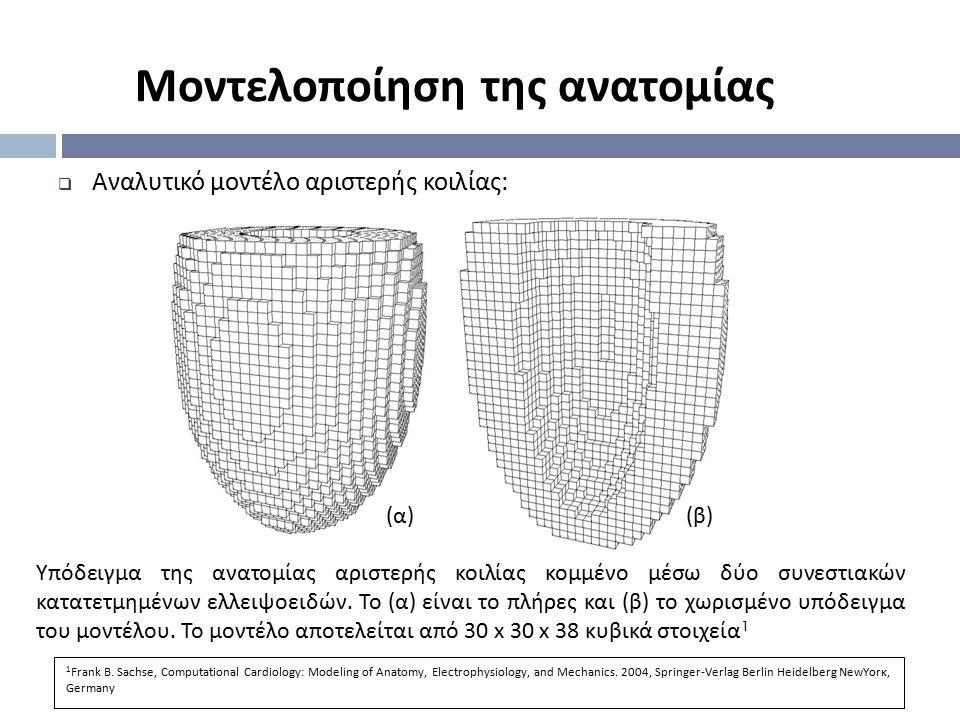  Αναλυτικό μοντέλο αριστερής κοιλίας : (α)(α)(β)(β) Υπόδειγμα της ανατομίας αριστερής κοιλίας κομμένο μέσω δύο συνεστιακών κατατετμημένων ελλειψοειδώ