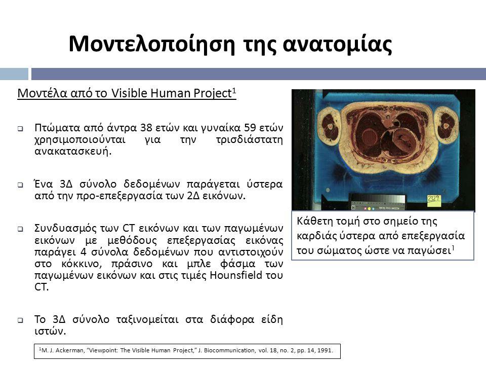 Μοντέλα από το Visible Human Project 1  Πτώματα από άντρα 38 ετών και γυναίκα 59 ετών χρησιμοποιούνται για την τρισδιάστατη ανακατασκευή.  Ένα 3 Δ σ