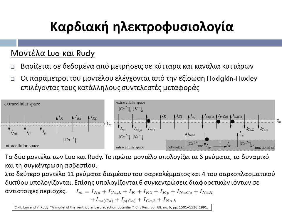 Μοντέλα Luo και Rudy  Βασίζεται σε δεδομένα από μετρήσεις σε κύτταρα και κανάλια κυττάρων  Οι παράμετροι του μοντέλου ελέγχονται από την εξίσωση Hod