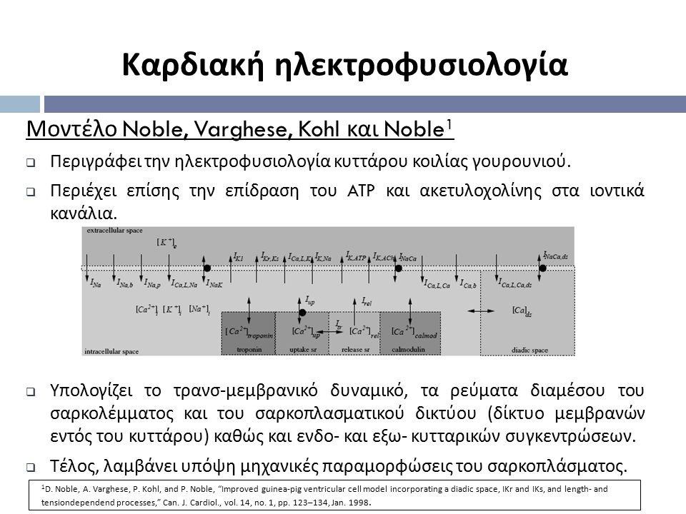 Μοντέλο Noble, Varghese, Kohl και Noble 1  Περιγράφει την ηλεκτροφυσιολογία κυττάρου κοιλίας γουρουνιού.  Περιέχει επίσης την επίδραση του ATP και α