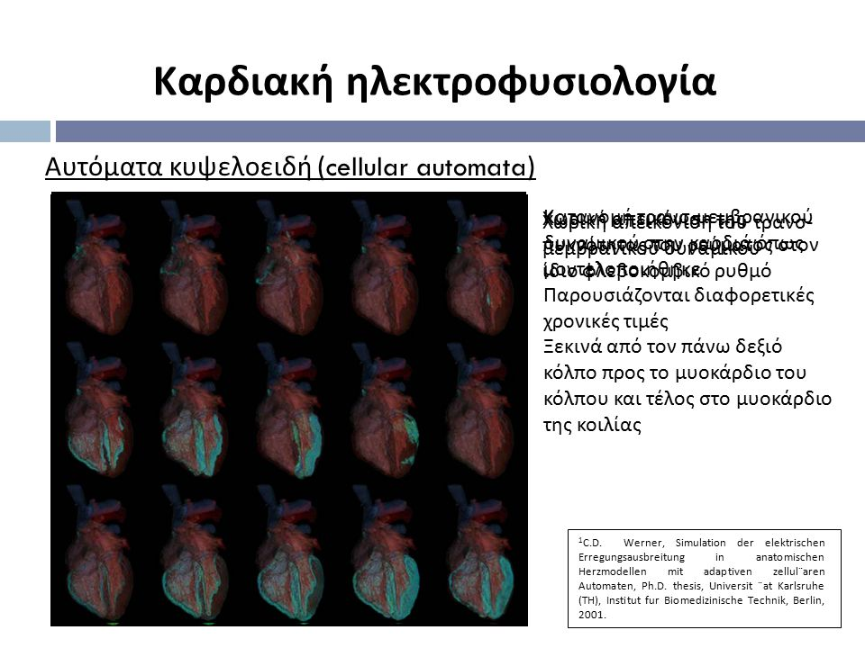 Αυτόματα κυψελοειδή (cellular automata) Κατανομή τρανσ - μεμβρανικού δυναμικού στην καρδιά όπως μοντελοποιήθηκε Παρουσιάζονται διαφορετικές χρονικές τ