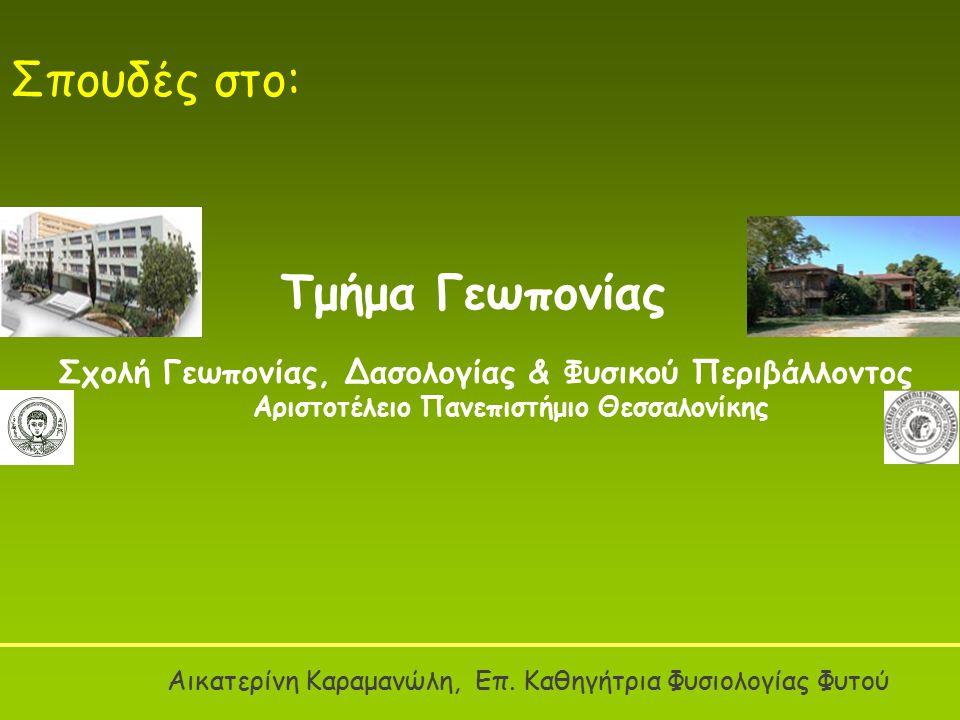 Στη Θεσσαλονίκη, στο Τμήμα Γεωπονίας, ΑΠΘ Στην Αθήνα, στο Γεωπονικό Πανεπιστήμιο Αθηνών Στο Βόλο, στη Γεωπονική Σχολή Θεσσαλίας Στην Ορεστιάδα, στην Σχολή Γεωργικής Ανάπτυξης Γεωπονικές Σπουδές στην Ελλάδα