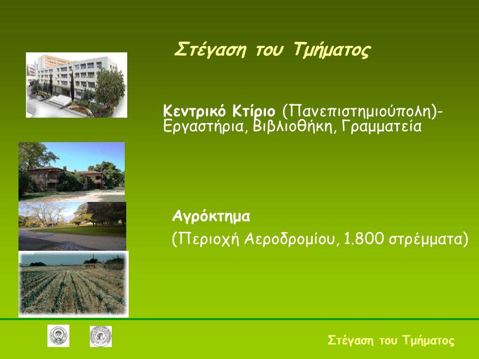 Στέγαση του Τμήματος Κεντρικό Κτίριο (Πανεπιστημιούπολη)- Εργαστήρια, Βιβλιοθήκη, Γραμματεία Στέγαση του Τμήματος Αγρόκτημα (Περιοχή Αεροδρομίου, 1.800 στρέμματα)