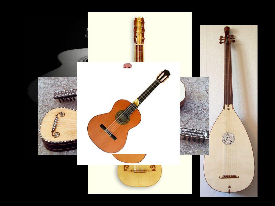 Αργότερα εμφανίστηκαν και άλλες ποικιλίες όπως η 12χορδη κιθάρα, η χαβανέζικη κιθάρα και η ακουστική κιθάρα.