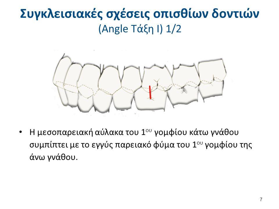  Οριζόντια πρόταξη ονομάζεται η απόσταση μεταξύ των κοπτικών χειλέων των άνω προσθίων δοντιών από την χειλική επιφάνεια των προσθίων δοντιών της κάτω γνάθου κατά το οριζόντιο επίπεδο, όταν η κάτω γνάθος βρίσκεται σε θέση μέγιστης συγγόμφωσης.