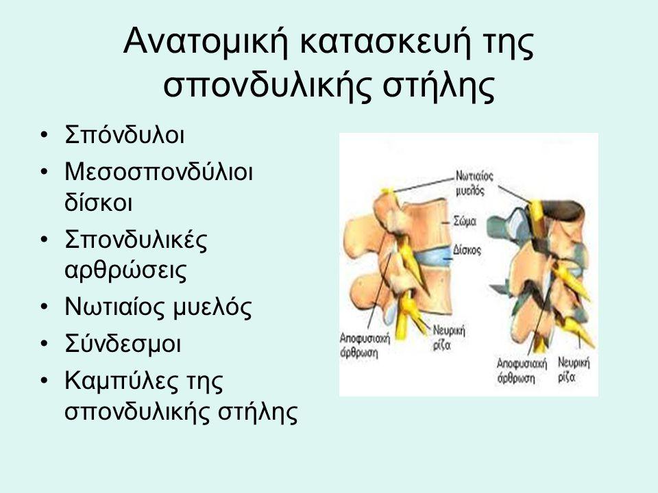 Ανατομική κατασκευή της σπονδυλικής στήλης Σπόνδυλοι Μεσοσπονδύλιοι δίσκοι Σπονδυλικές αρθρώσεις Νωτιαίος μυελός Σύνδεσμοι Καμπύλες της σπονδυλικής στ