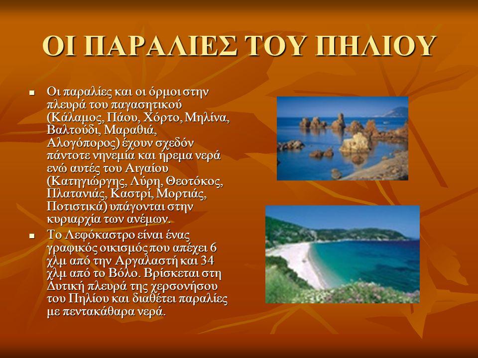 ΟΙ ΠΑΡΑΛΙΕΣ ΤΟΥ ΠΗΛΙΟΥ Οι παραλίες και οι όρμοι στην πλευρά του παγασητικού (Κάλαμος, Πάου, Χόρτο, Μηλίνα, Βαλτούδι, Μαραθιά, Αλογόπορος) έχουν σχεδόν