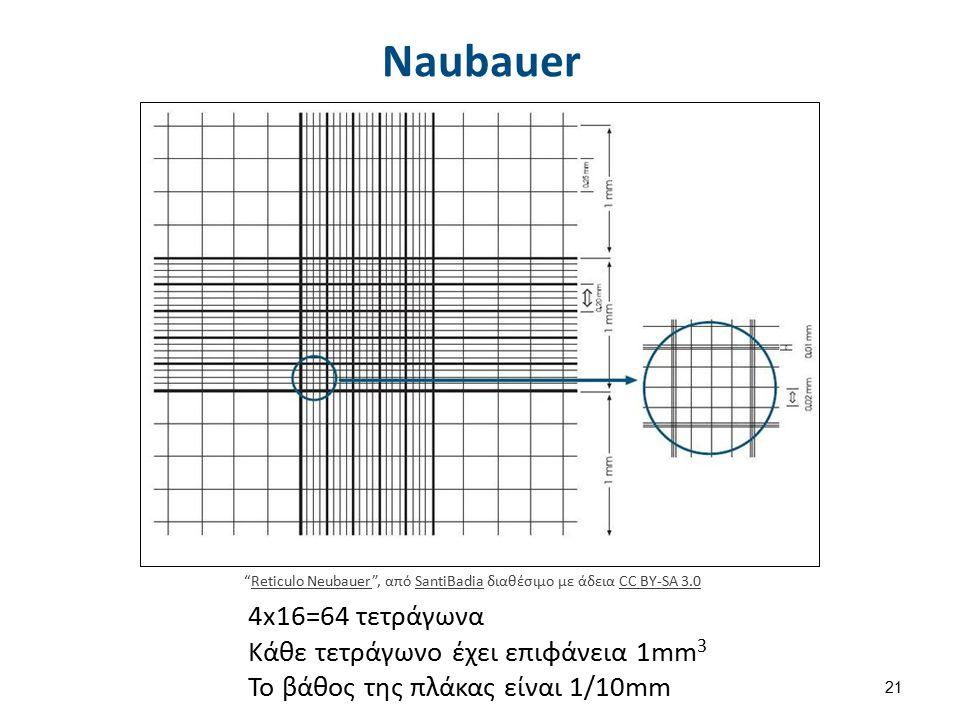 Naubauer 4x16=64 τετράγωνα Κάθε τετράγωνο έχει επιφάνεια 1mm 3 To βάθος της πλάκας είναι 1/10mm Reticulo Neubauer , από SantiBadia διαθέσιμο με άδεια CC BY-SA 3.0Reticulo NeubauerSantiBadiaCC BY-SA 3.0 21