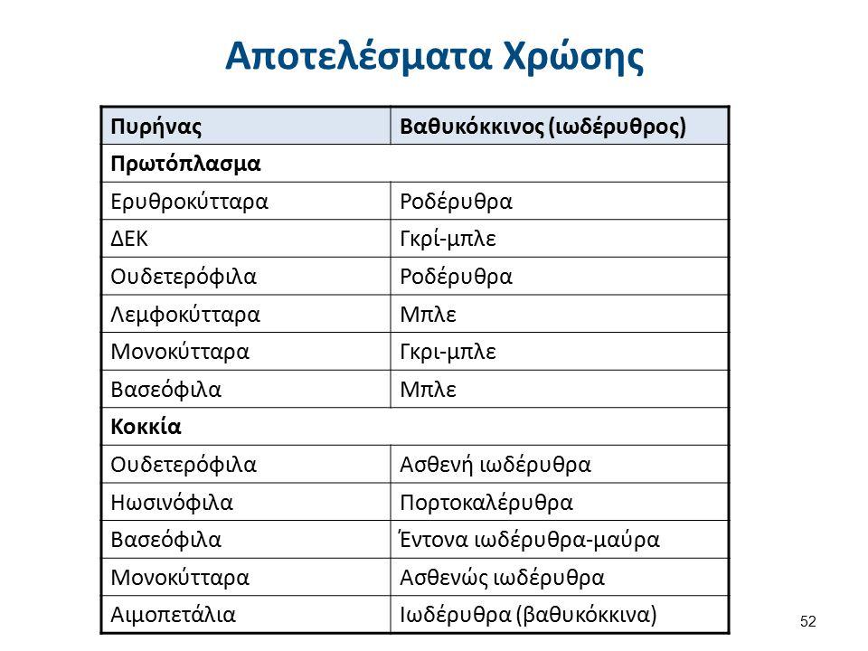 ΠυρήναςΒαθυκόκκινος (ιωδέρυθρος) Πρωτόπλασμα ΕρυθροκύτταραΡοδέρυθρα ΔΕΚΓκρί-μπλε ΟυδετερόφιλαΡοδέρυθρα ΛεμφοκύτταραΜπλε ΜονοκύτταραΓκρι-μπλε ΒασεόφιλαΜπλε Κοκκία ΟυδετερόφιλαΑσθενή ιωδέρυθρα ΗωσινόφιλαΠορτοκαλέρυθρα ΒασεόφιλαΈντονα ιωδέρυθρα-μαύρα ΜονοκύτταραΑσθενώς ιωδέρυθρα ΑιμοπετάλιαΙωδέρυθρα (βαθυκόκκινα) Αποτελέσματα Χρώσης 52